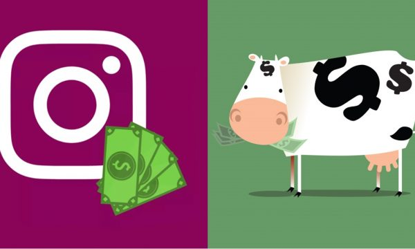 arrecade fundos pelo instagram